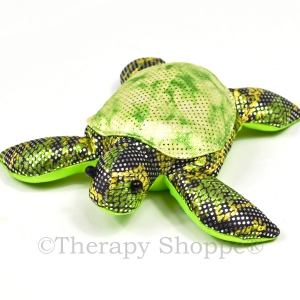 Pokey Weighted Fidget Turtle